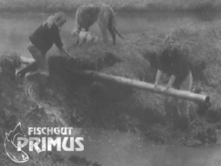 """It was nearly a total loss"": Primus-Team in ""flood-combat"""